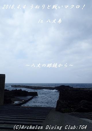 180404-yaesoko02