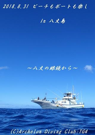 180831-idekyoyasoso02