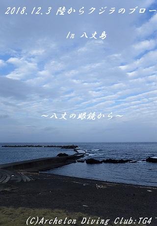 181203-nonsoko02
